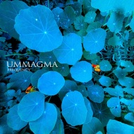 Ummagma – Frequency